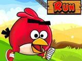 Игра Злые Птички: Бег