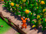 Игра Приключения Кролика 3Д