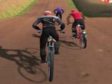 Игра Гонки на Велосипедах 3Д