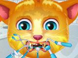 Джинджер: Проблемные Зубы