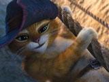 Кот в Сапогах Лезет по Канату