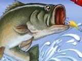 Игра Чемпион Рыбалки