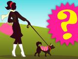 Игра Тесты: Твоя Собака