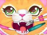 Игра Кошка у Стоматолога