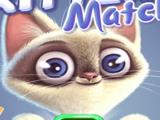 Игра Кошки: Собери Карточки