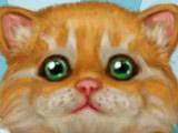 Игра Уход за Кошкой