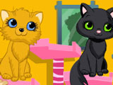 Игра Милые Кошки в Спа-салоне