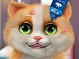 Игра Ухаживать за Кошечкой