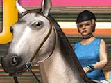 Игра Скачки на Лошади
