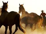 Игра Пазл: Ковбои на Лошадях