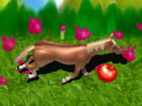 Игра Лошадь на Свободе