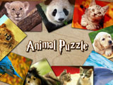 Игра Пазлы Животные